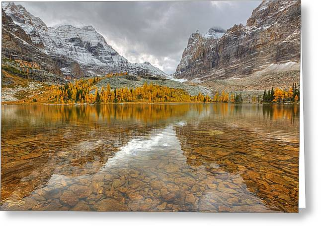 Hungabee Lake Greeting Card by James Anderson
