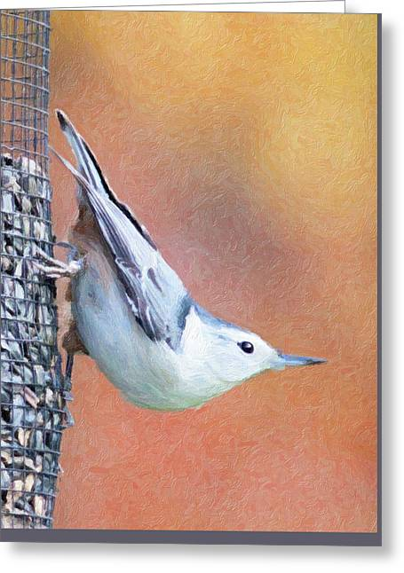 Hungry Nuthatch Greeting Card