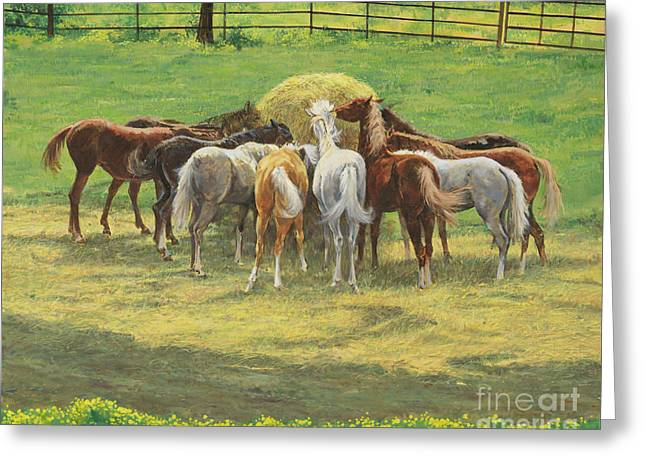 Hungry Yearlings At Big Creek Greeting Card by Don Langeneckert