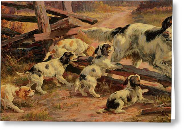 Hunting Dog With Pups Greeting Card