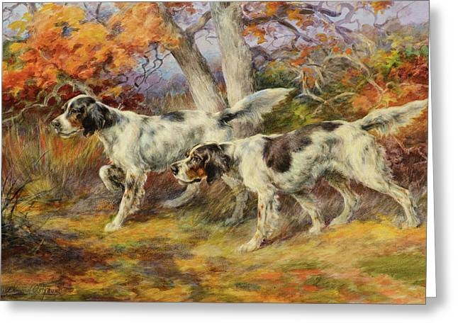 Hunting Dogs Greeting Card