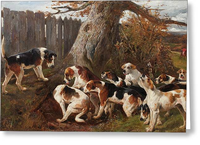 Hunting Hounds Greeting Card