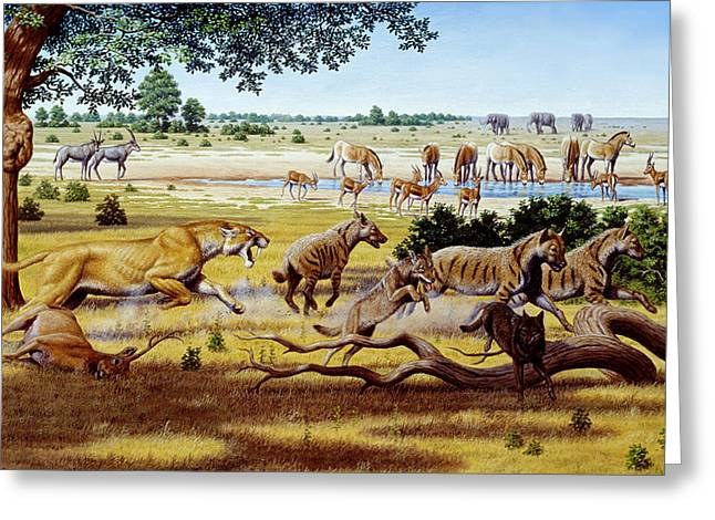 Hunting Sabre-toothed Cat Greeting Card