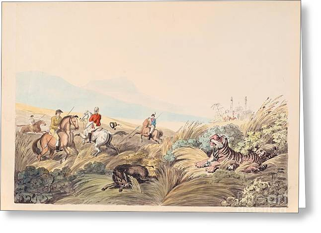 Hunting Scene With Tiger And Boar Greeting Card by MotionAge Designs