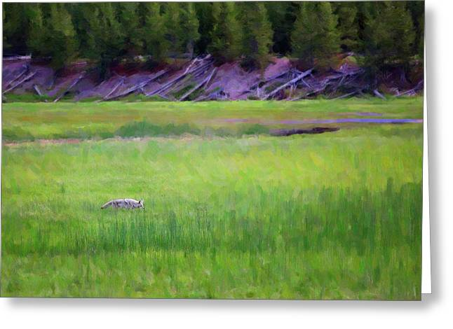 Greeting Card featuring the photograph Hunting by Sue Collura