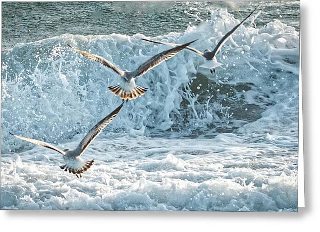 Hunting The Waves Greeting Card