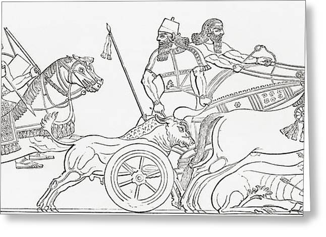 Hunting Wild Bull In Ancient Assyria Greeting Card