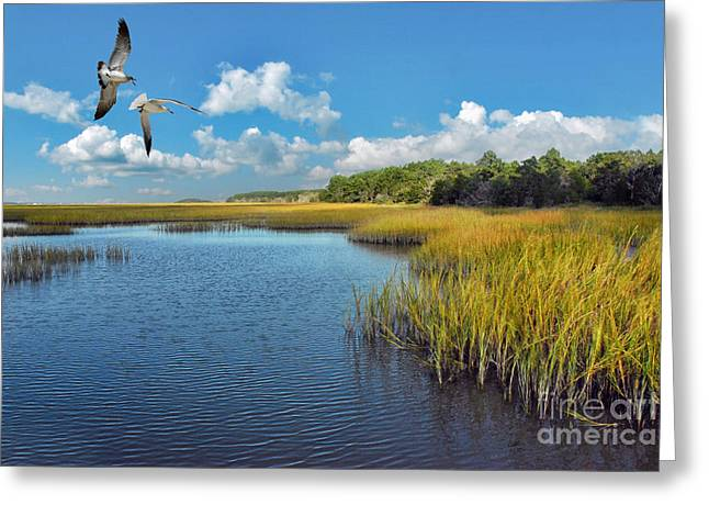 Huntington Beach Marsh Walk Greeting Card by Jeff McJunkin