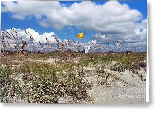 Huntington Breezes II Greeting Card by Jeff McJunkin