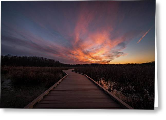 Huntley Meadows Sunset Greeting Card by Michael Donahue