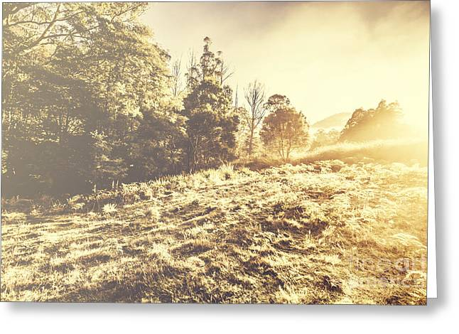 Huon Valley Vintage Landscape Greeting Card by Jorgo Photography - Wall Art Gallery