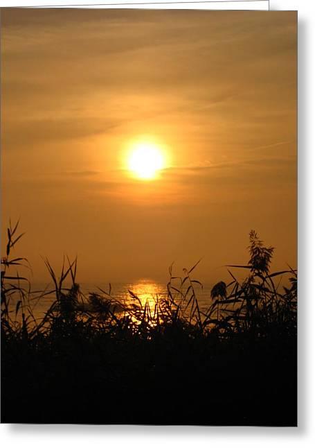 Sheryl Burns Greeting Cards - Huron Sunrise Greeting Card by Sheryl Burns