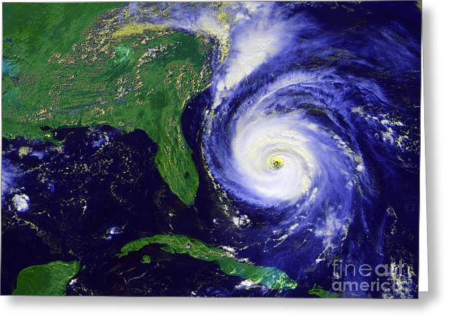 Satellite View Greeting Cards - Hurricane Fran Greeting Card by Stocktrek Images