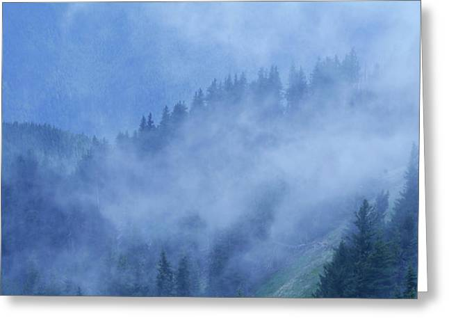 Hurricane Ridge Greeting Card