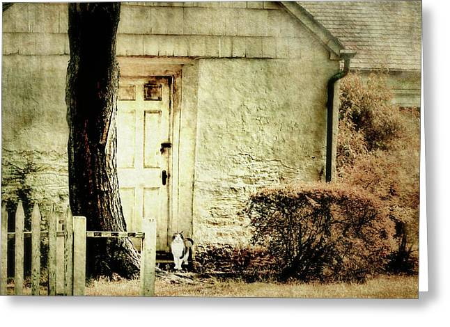 Hurry Home Greeting Card by Diana Angstadt