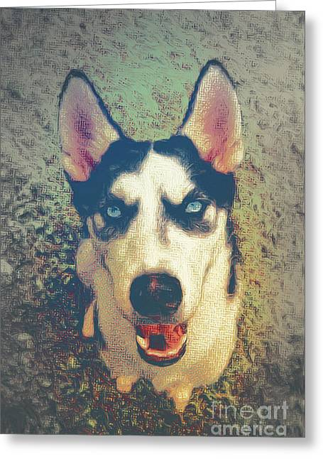 Husky Modern Greeting Card by Angela Doelling AD DESIGN Photo and PhotoArt
