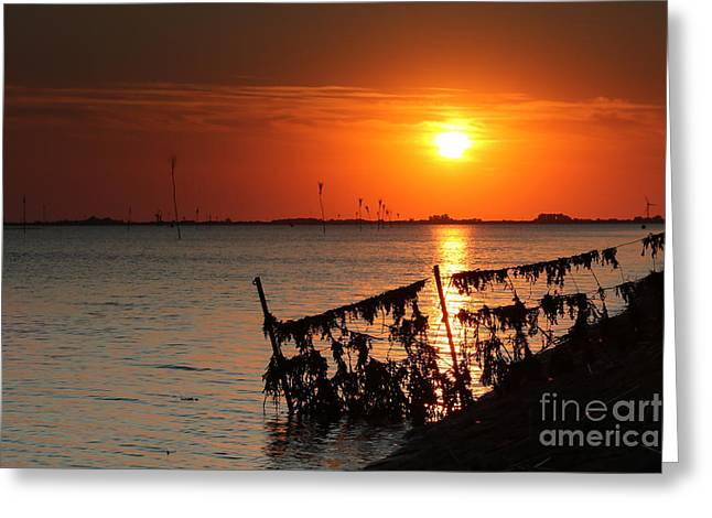 Husum Sunset Greeting Card