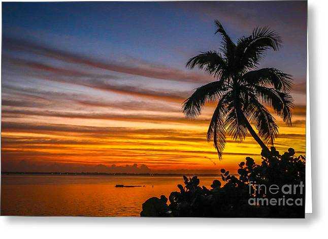 Hutchinson Island Sunrise #1 Greeting Card by Tom Claud