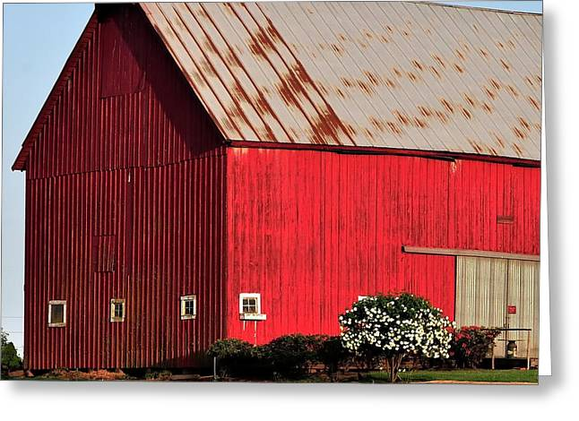 Hwy 47 Red Barn 21x21 Greeting Card