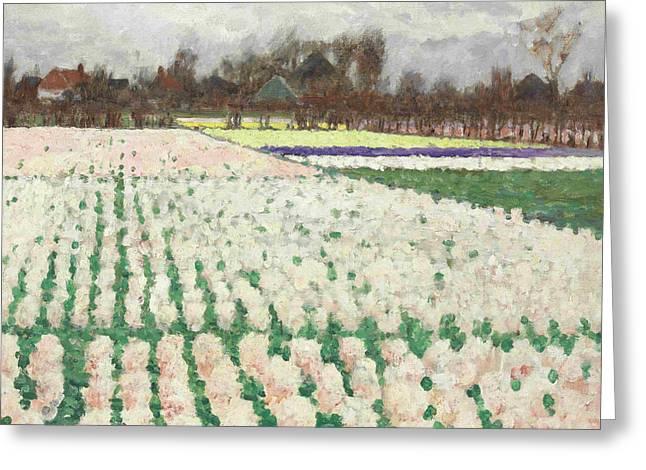 Hyacinth Fields Greeting Card