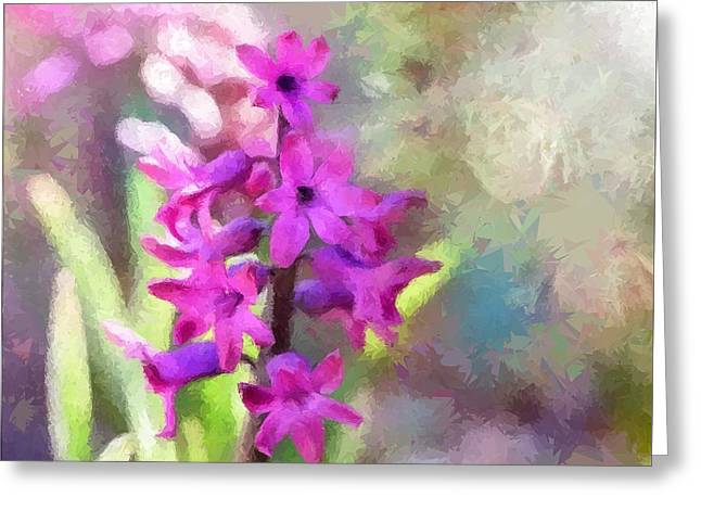 Hyacinth Greeting Card by Louise Lavallee