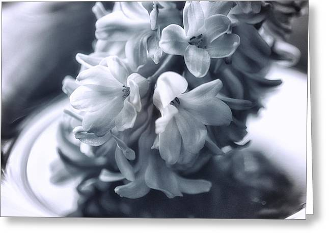 Hyacinth Plated Greeting Card