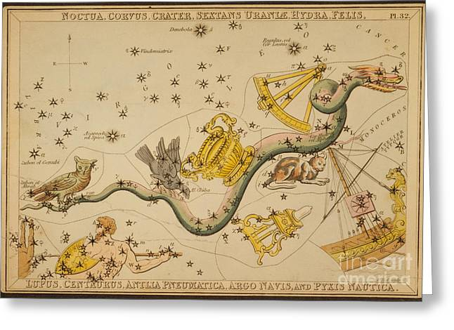 Hydra And Surrounding Constellations Greeting Card