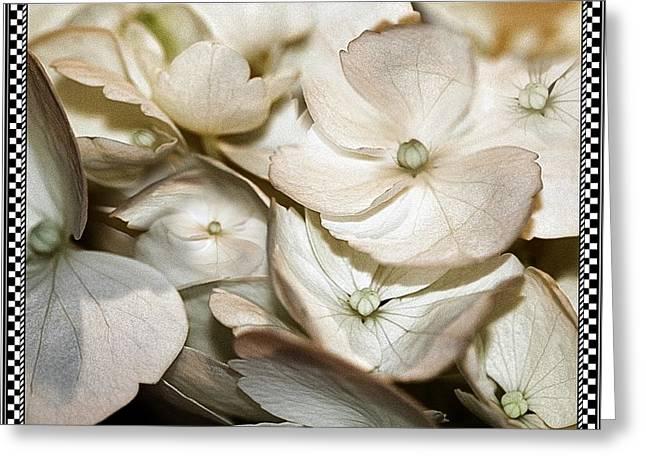 Hydrangea Blossom 2 Framed Greeting Card by Andrea Lazar