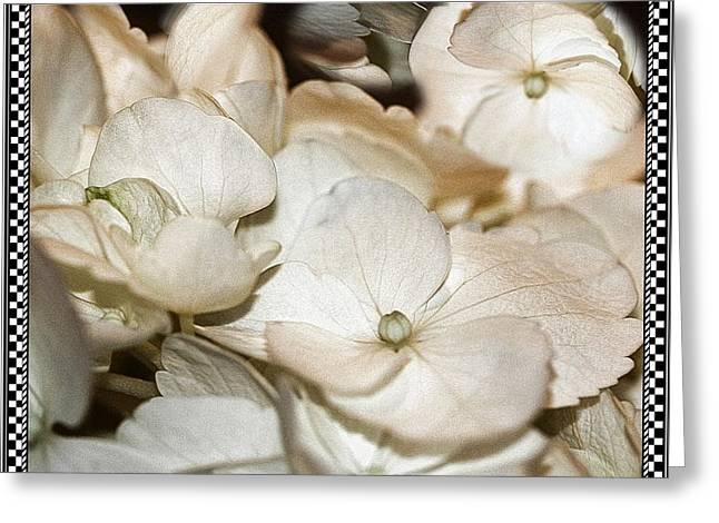 Hydrangea Blossom Framed Greeting Card by Andrea Lazar