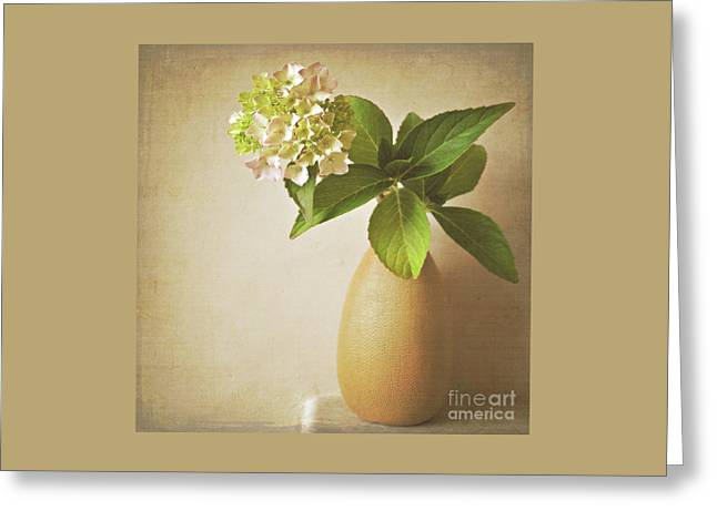 Hydrangea With Leaves Greeting Card