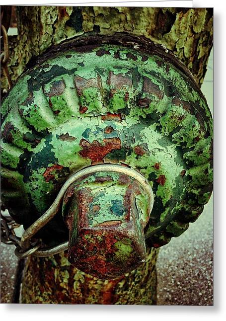 Greeting Card featuring the photograph Hydrant 255 by Olivier Calas