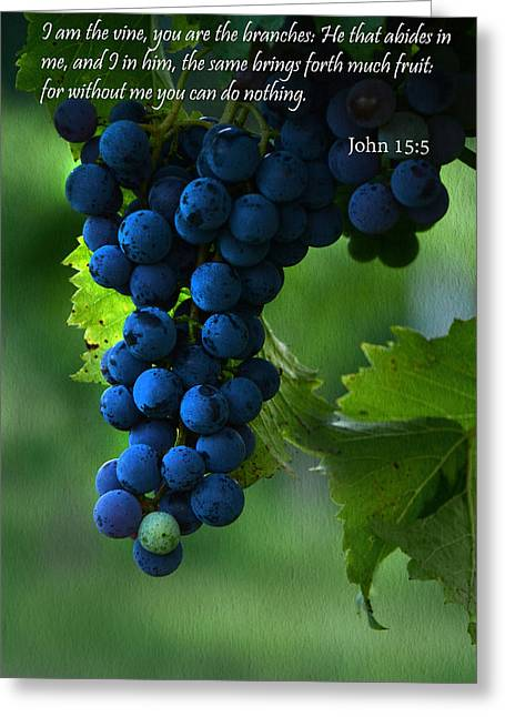 I Am The Vine Greeting Card by Ann Bridges