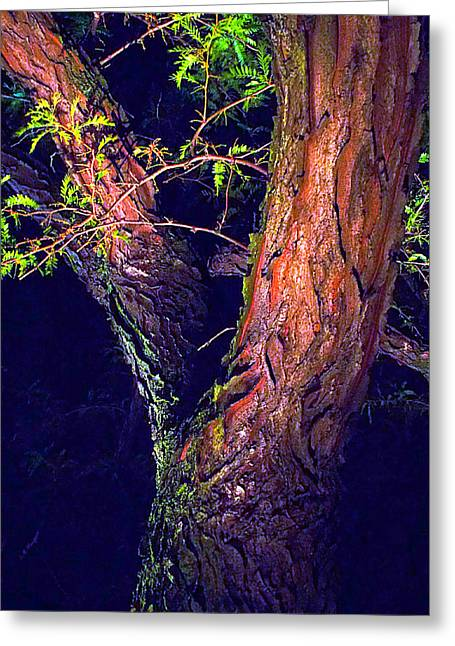 I Am Tree Greeting Card