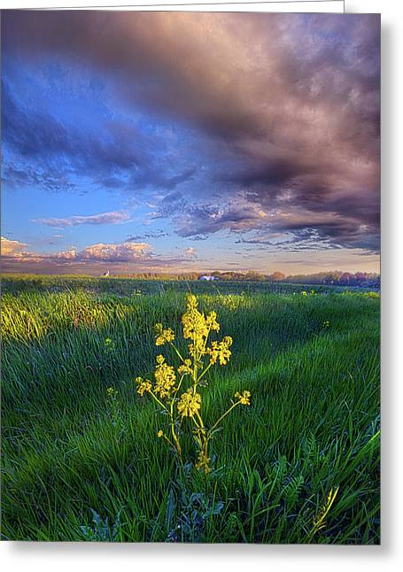 I Can See You When I Close My Eyes Greeting Card by Phil Koch
