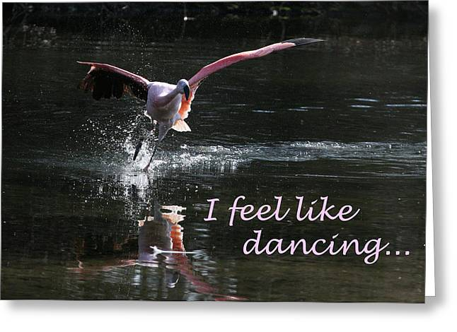 I Feel Like Dancing Greeting Card by Karol Livote