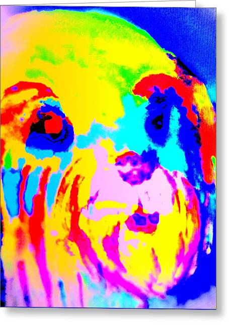 I Feel So Colorful Today  Greeting Card