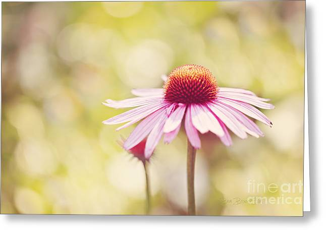 I Got Sunshine Greeting Card by Beve Brown-Clark Photography