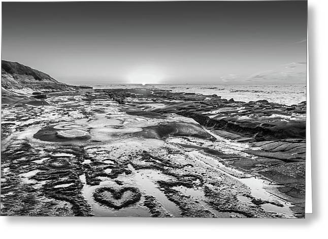 I Love You As Big As The Ocean Too  Black And White Greeting Card by Scott Campbell