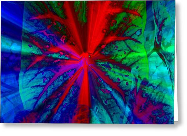I Promised You Colors Greeting Card by Fania Simon