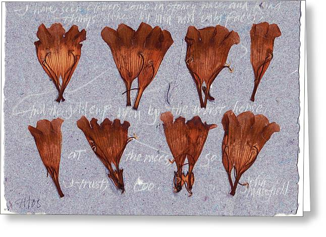 I Trust Too   Virginia Creeper Greeting Card by Annie Alexander