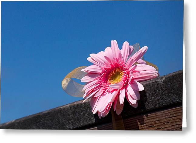 Greeting Card featuring the photograph I Will Never Forget You by Lora Lee Chapman