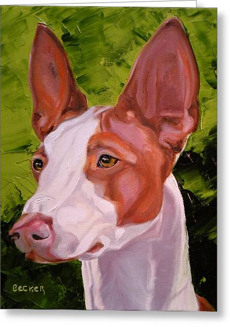 Ibizan Hound Greeting Card