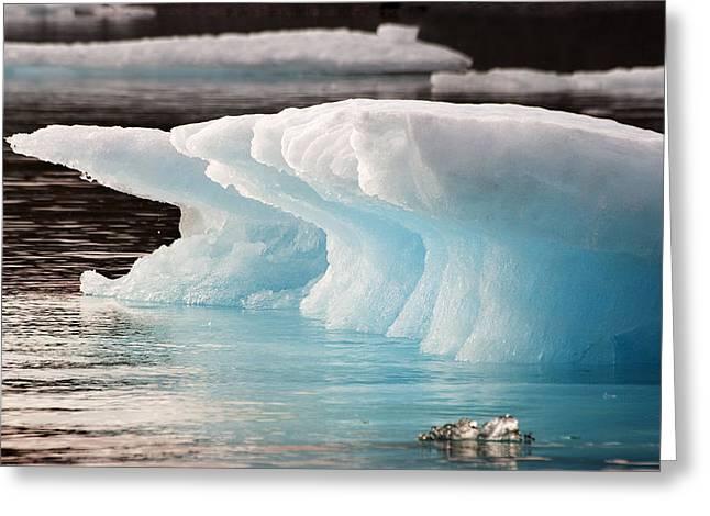 Ice Bears Greeting Card