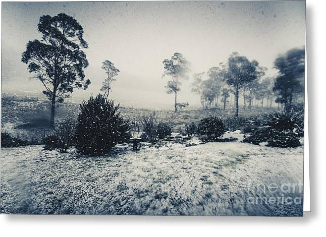 Ice Cold Winter Background Greeting Card by Jorgo Photography - Wall Art Gallery