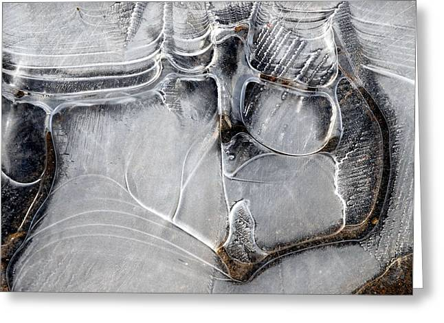 Ice Crystals Greeting Card by John Terwilliger