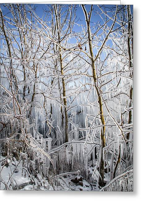 Ice Curtain Greeting Card