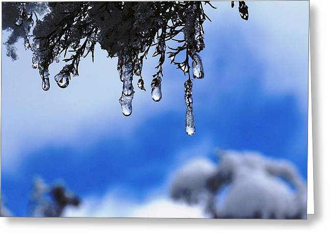 Ice Drops Greeting Card