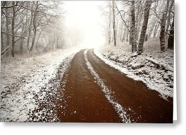 Cypress Hills Greeting Cards - Ice fog in Cypress Hills Provincial Park of Saskatchewan Greeting Card by Mark Duffy