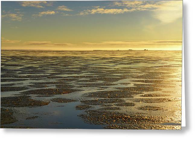 Ice Formation Over Calm Water Of The Beaufort Sea At Barter Isla Greeting Card by Reimar Gaertner