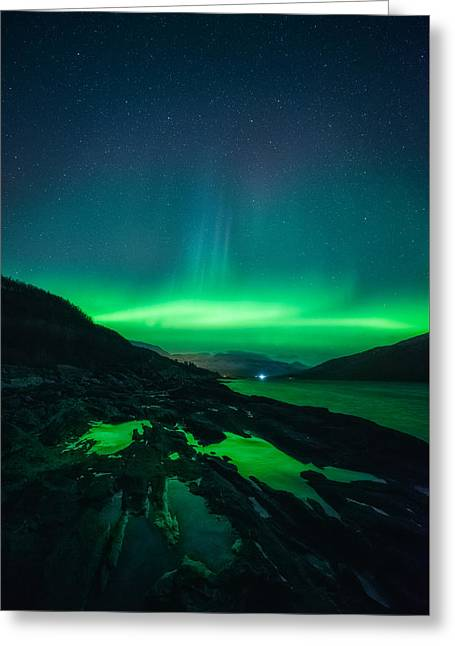 Ice Ice Baby Greeting Card by Tor-Ivar Naess